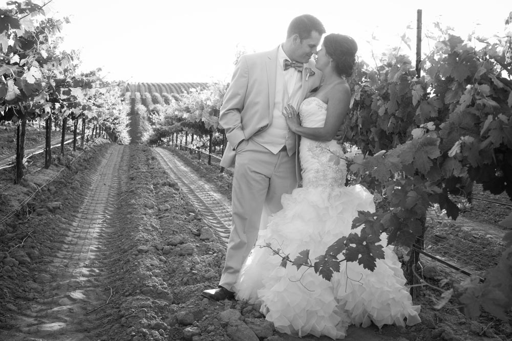 JJ Cellars Vineyard Wedding063.jpg
