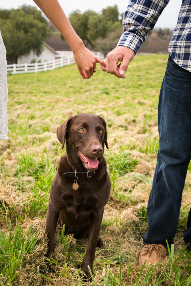 Greengate Ranch and Vineyard Engagement Sessions015.jpg