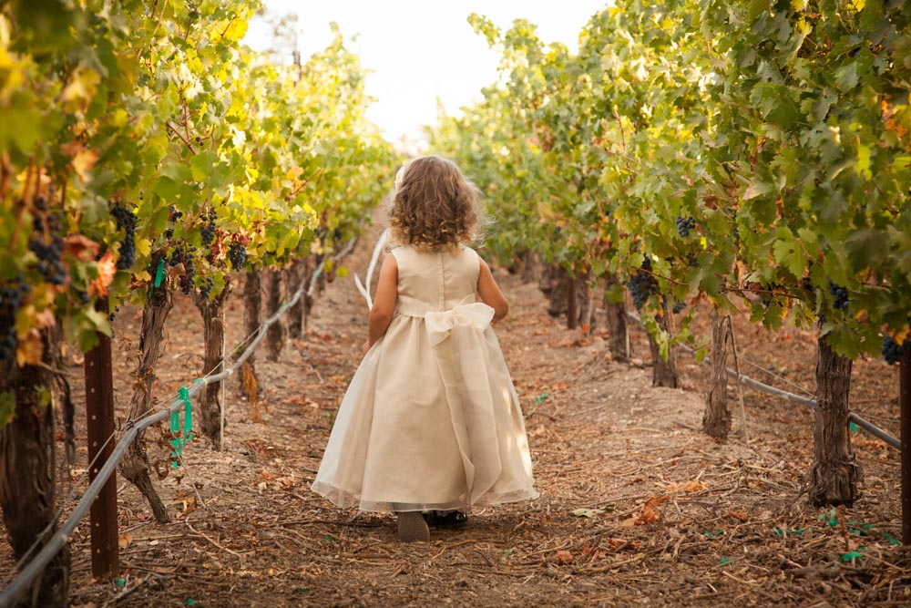 Summerwood Winery and Inn Wedding026.jpg