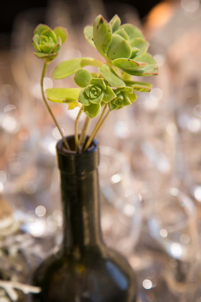Lago Giuseppe Winery Wedding042.jpg