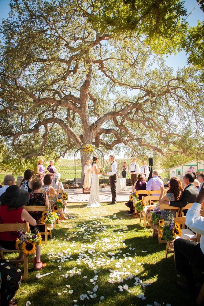 Pomar Junction Vineyard Wedding018.jpg