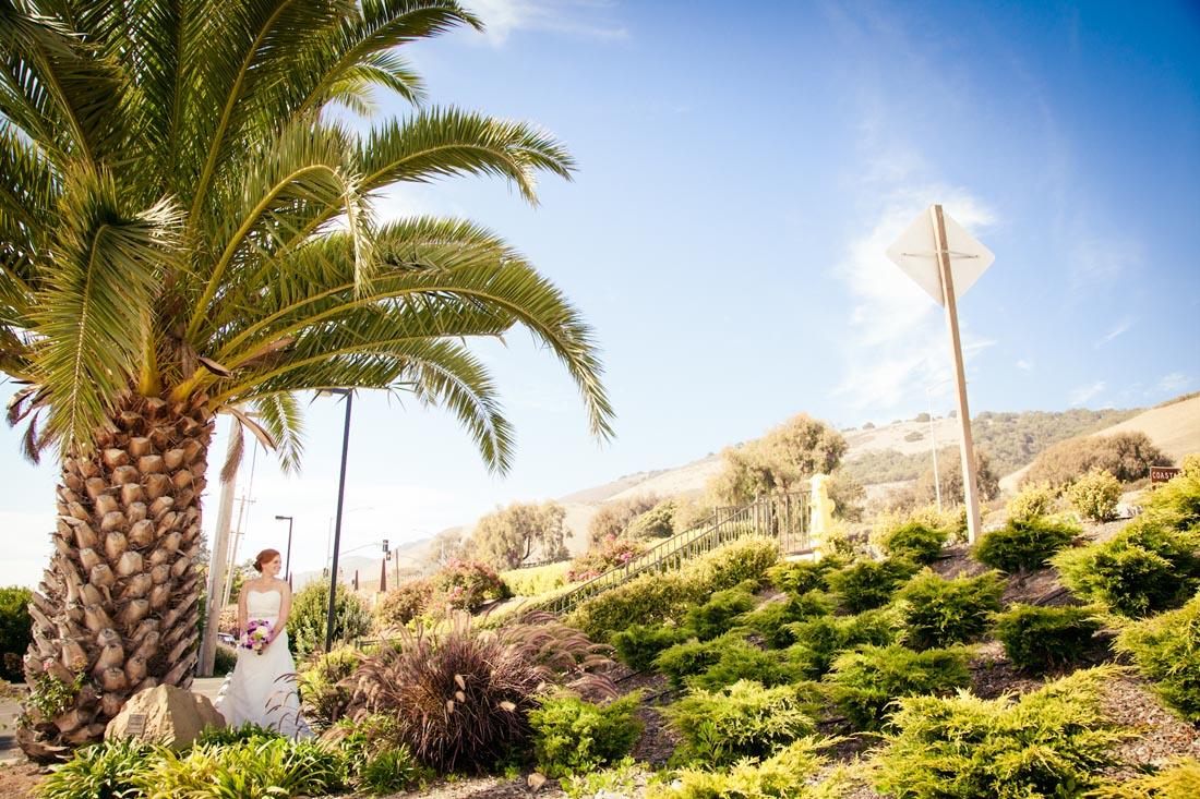 Shore Cliffs Ventana Grill Wedding040.jpg