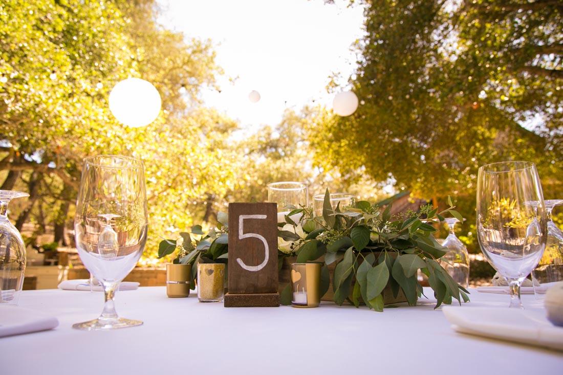 Tiber Canyon Ranch Wedding074.jpg