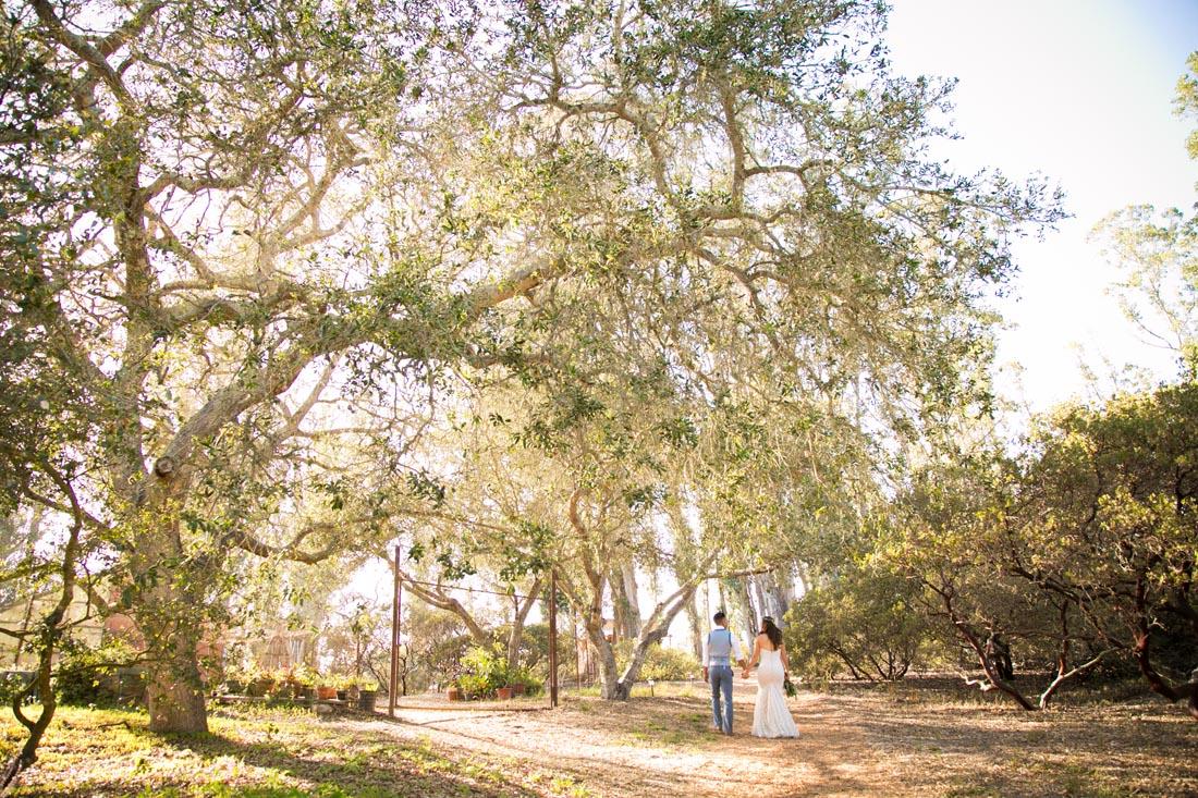 Tiber Canyon Ranch Wedding113.jpg