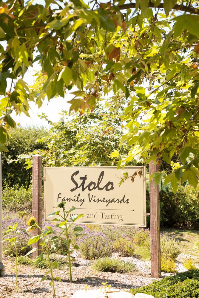 Cambria Wedding Photographer Stolo Family Vineyard  010.jpg