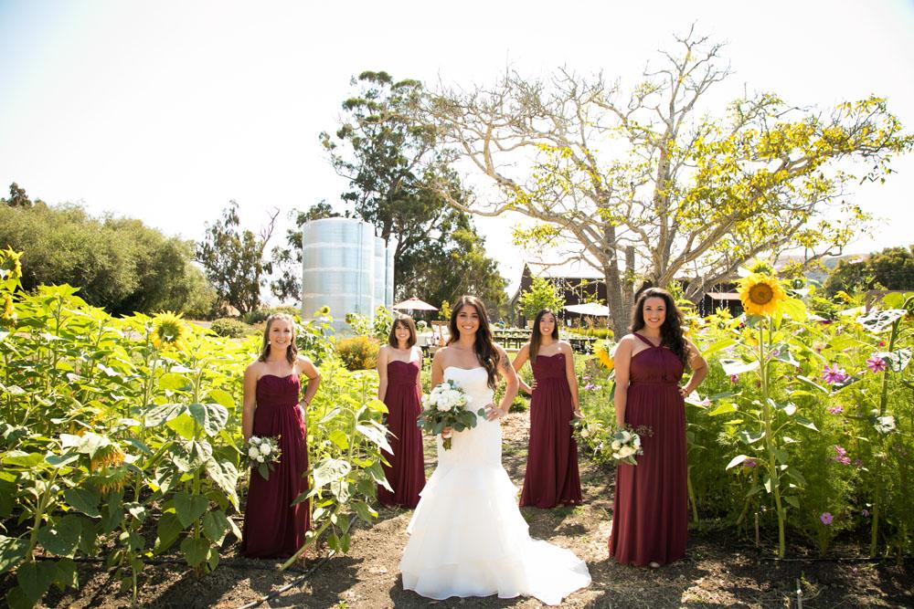 Cambria Wedding Photographer Stolo Family Vineyard  014.jpg