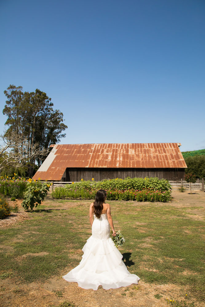 Cambria Wedding Photographer Stolo Family Vineyard  022.jpg