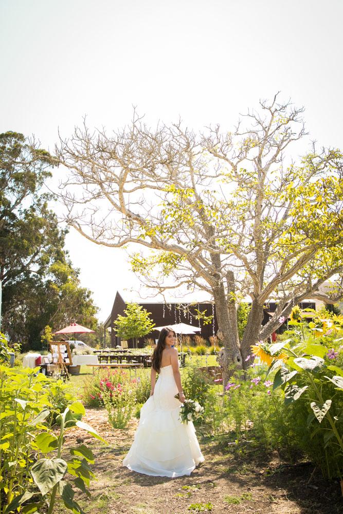 Cambria Wedding Photographer Stolo Family Vineyard  029.jpg