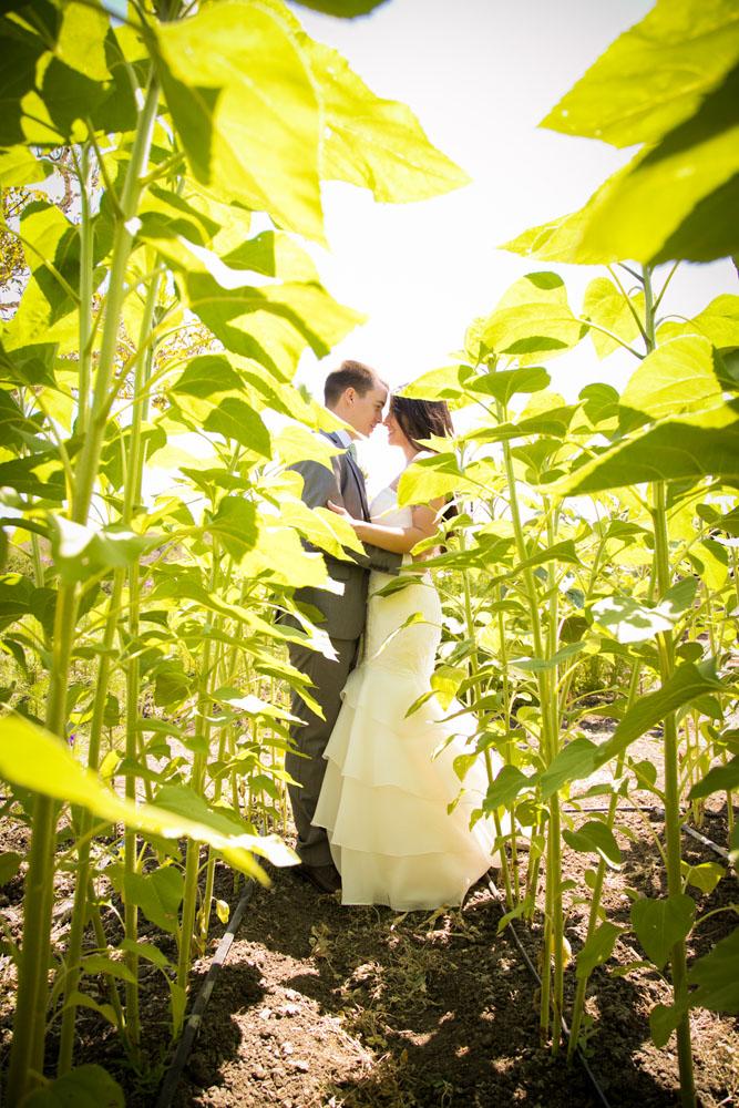 Cambria Wedding Photographer Stolo Family Vineyard  111.jpg