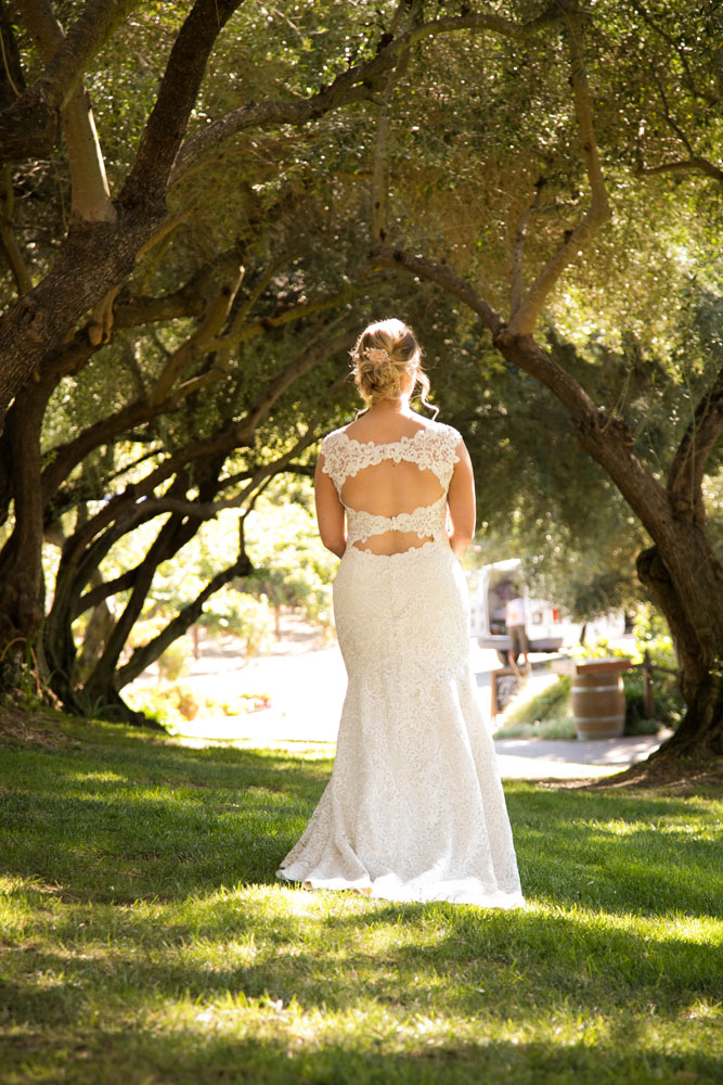 Paso Robles Wedding Photographer Still Waters Vineyard  034.jpg