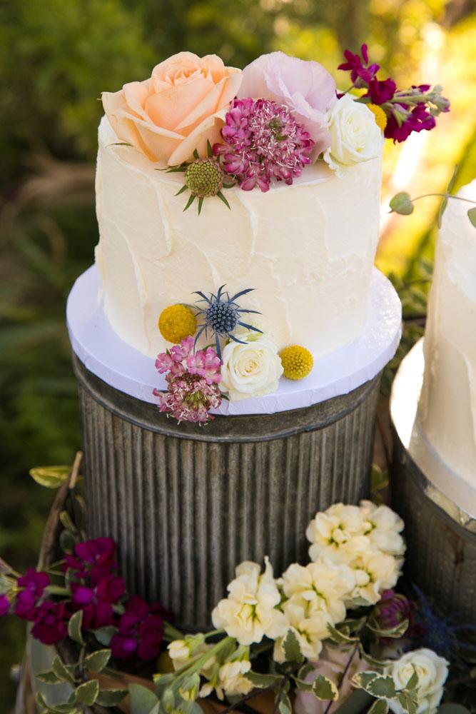 Paso Robles Wedding Photographer Still Waters Vineyard  052.jpg