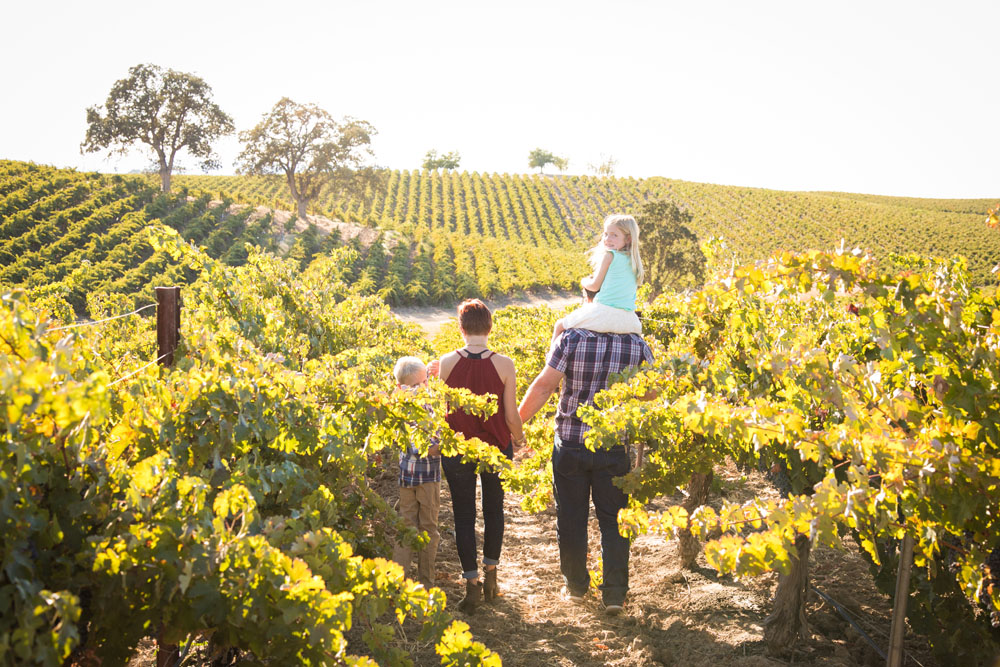 Paso Robles Family and Wedding Photographer Vineyard  049.jpg