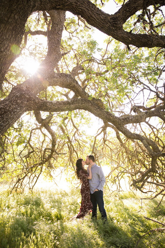 Paso Robles Engagement and Wedding Photographer 005.jpg