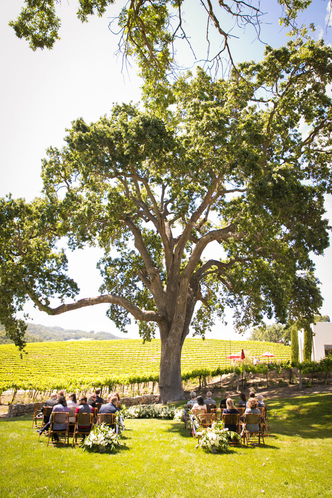 Paso Robles Wedding Photographer HammerSky Vineyard 068.jpg