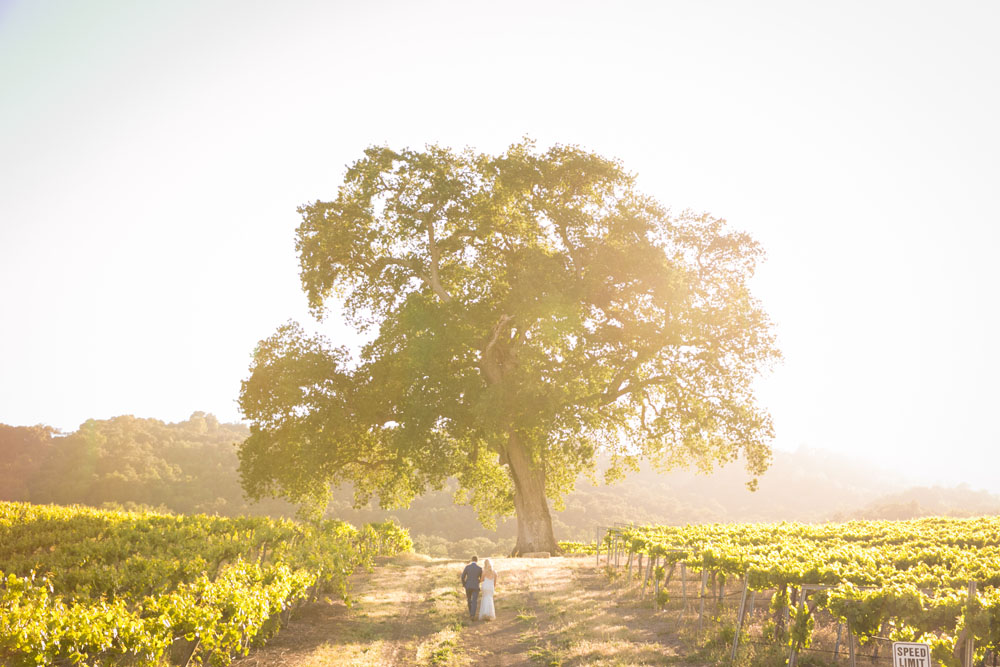 Paso Robles Wedding Photographer HammerSky Vineyard 160.jpg