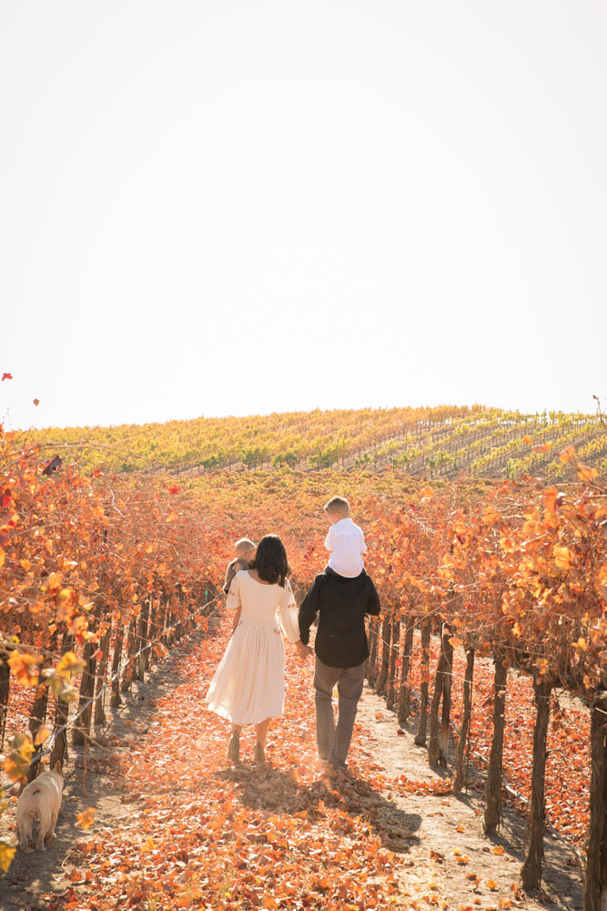 Paso Robles Family and Wedding Photographer Pomar Junction 057.jpg