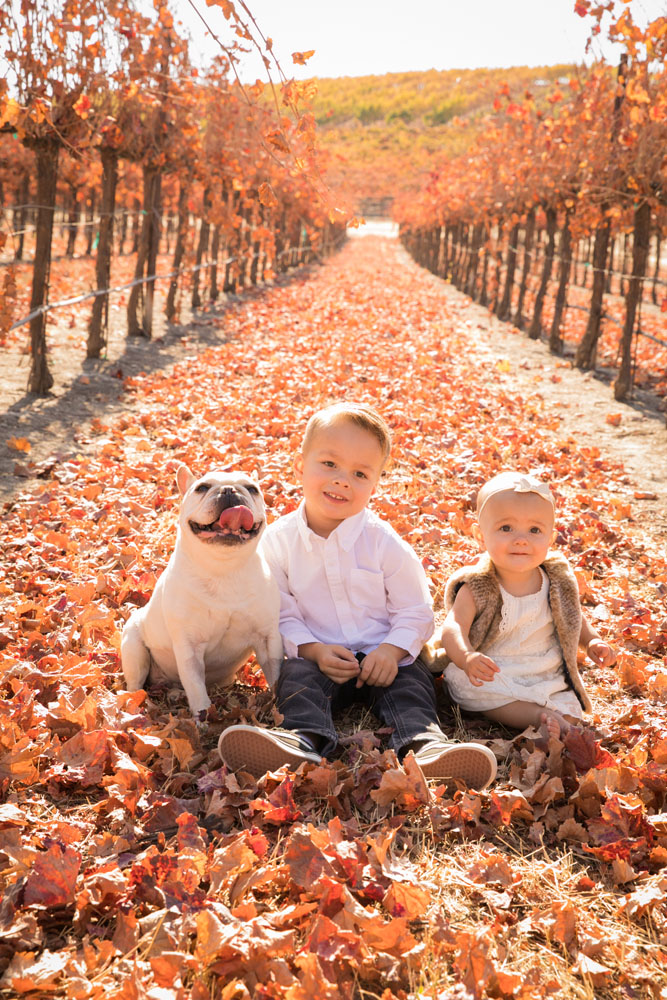 Paso Robles Family and Wedding Photographer Pomar Junction 067.jpg