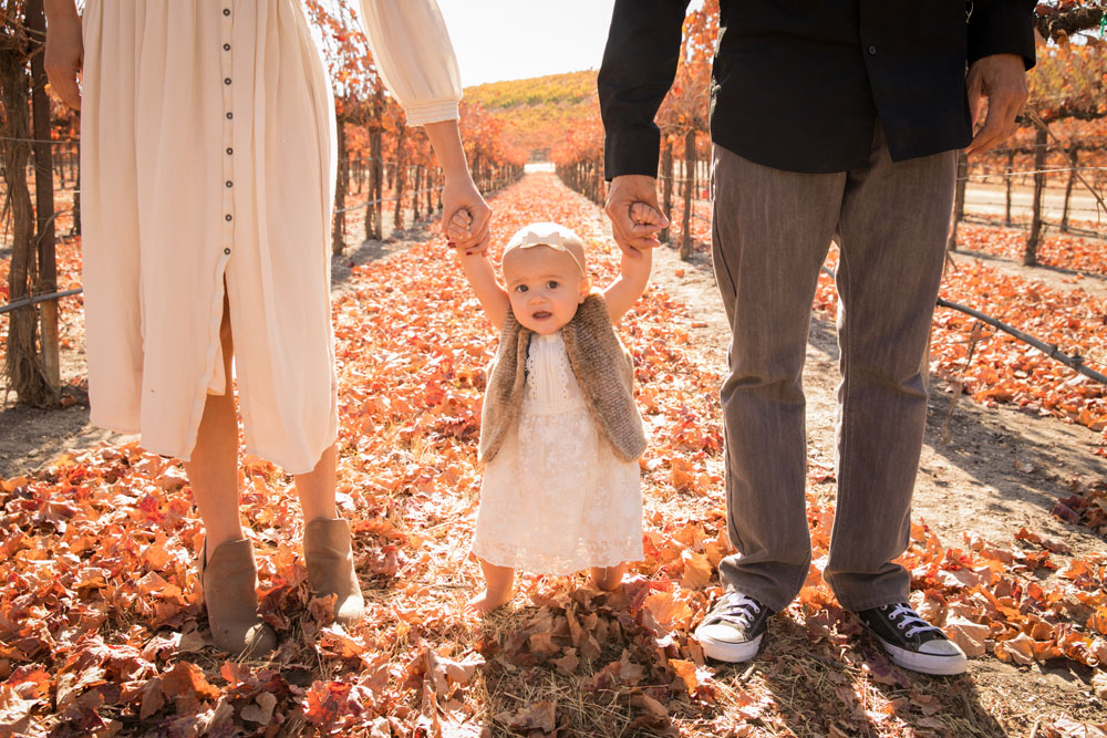 Paso Robles Family and Wedding Photographer Pomar Junction 071.jpg