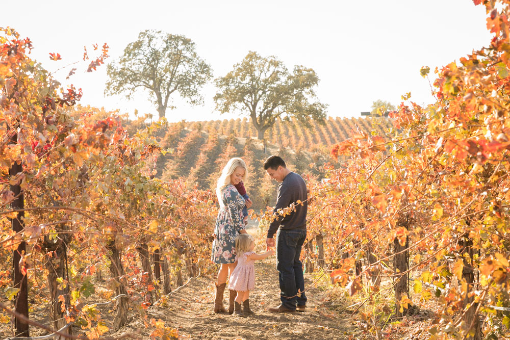 Paso Robles Family and Wedding Photographer Vineyard040.jpg