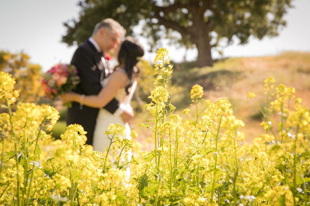 Paso Robles Wedding Photographer Cass Winery Allegretto Vineyard Resort 067.jpg