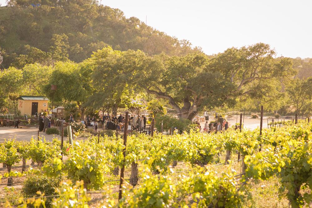 Paso Robles Wedding Photographer Cass Winery Allegretto Vineyard Resort 122.jpg