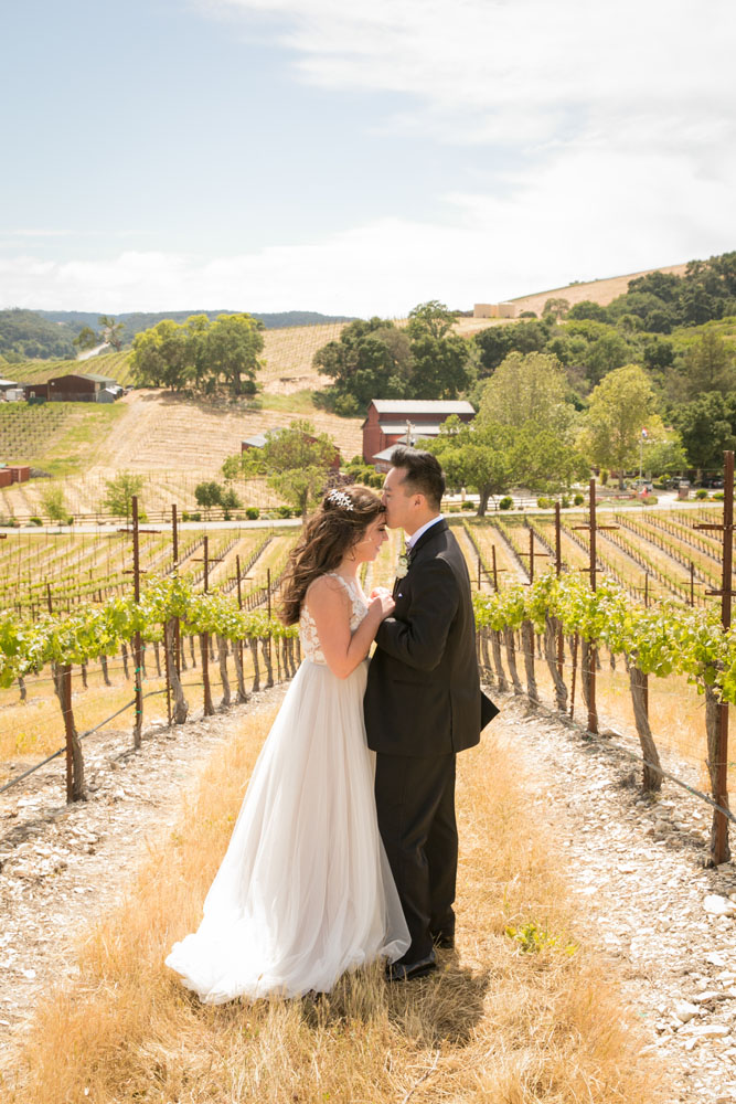 Paso Robles Wedding Photographer Tooth and Nail Winery 071.jpg