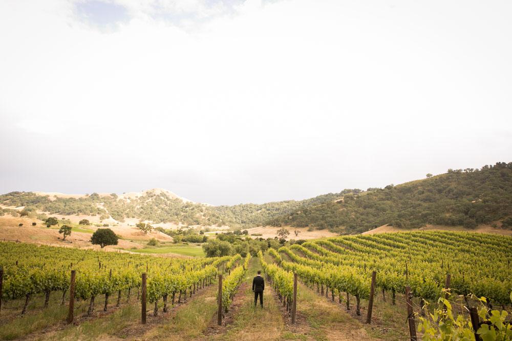 Paso Robles Wedding Photographer Clos LaChance Vineyards San Martin 045.jpg