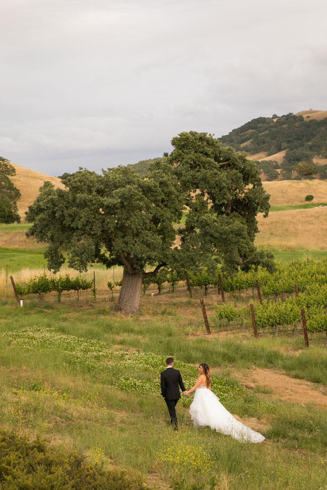 Paso Robles Wedding Photographer Clos LaChance Vineyards San Martin 127.jpg