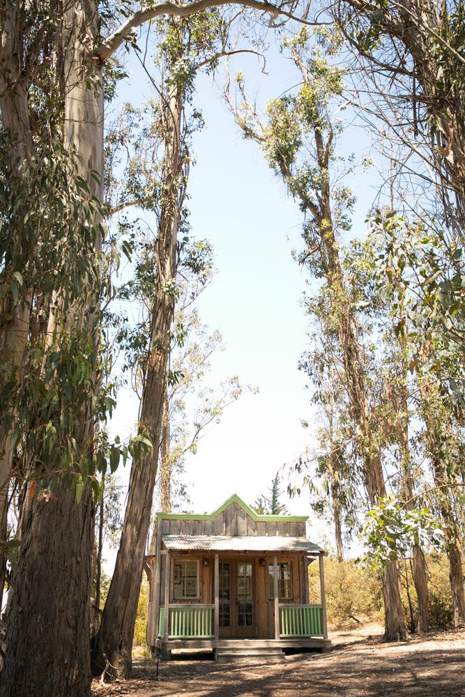San Luis Obispo Wedding Photographer Tiber Canyon 001.jpg