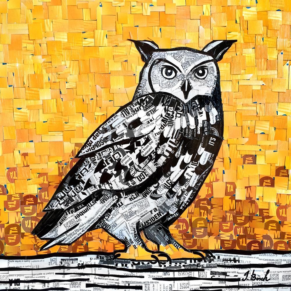 Owl_11x11.jpg