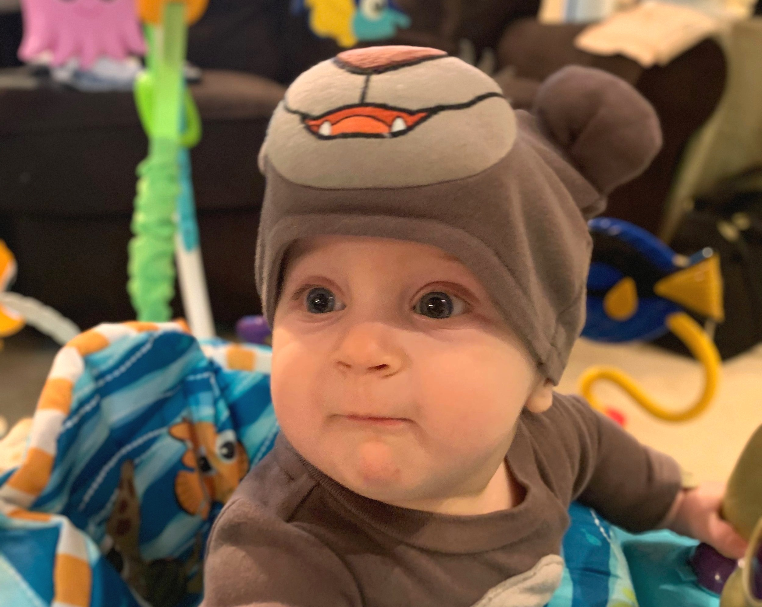 KennyBear was born on Boss's Day 2018. Our Boss Baby!