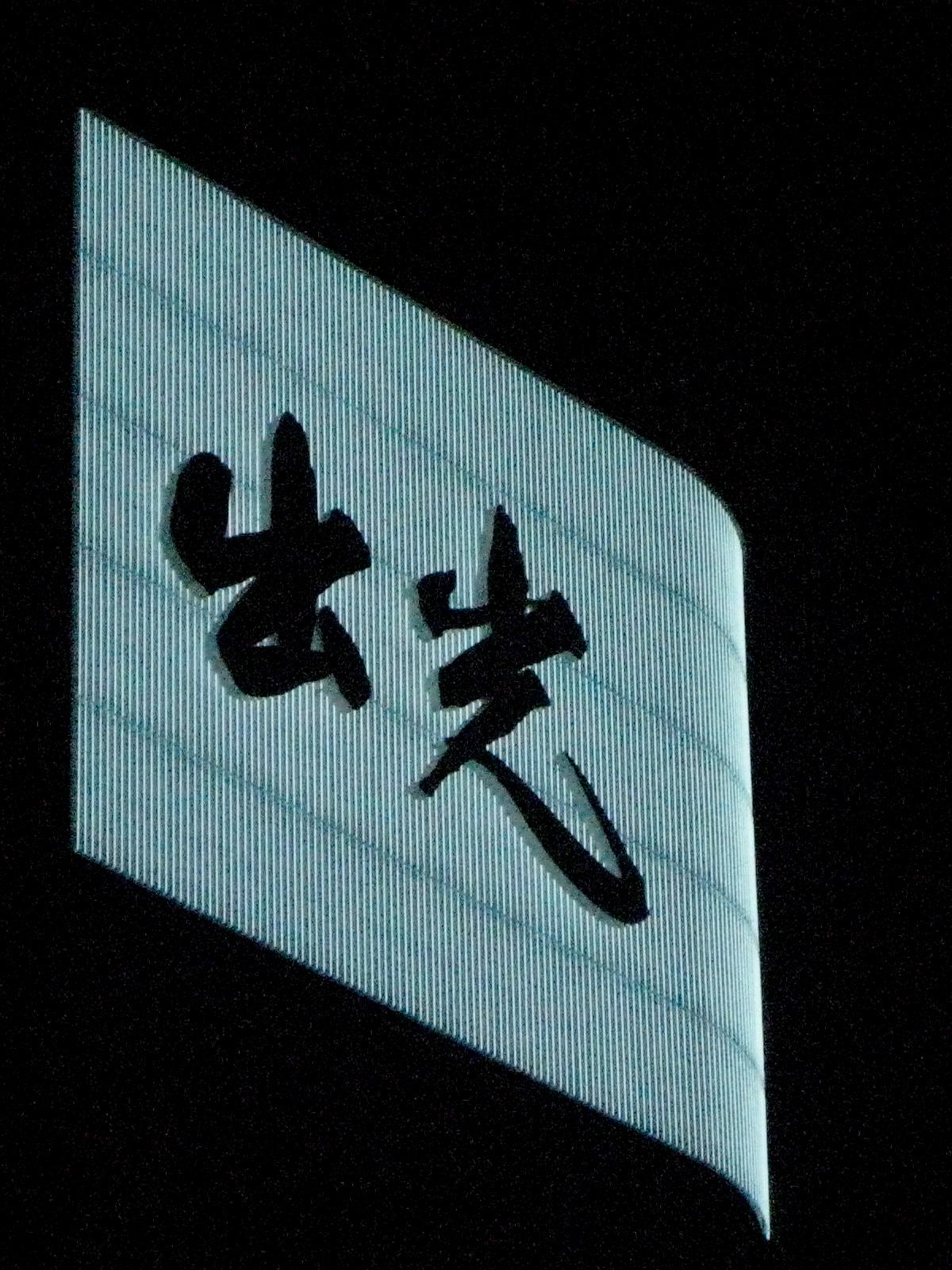 japan and beyond 1516.jpg