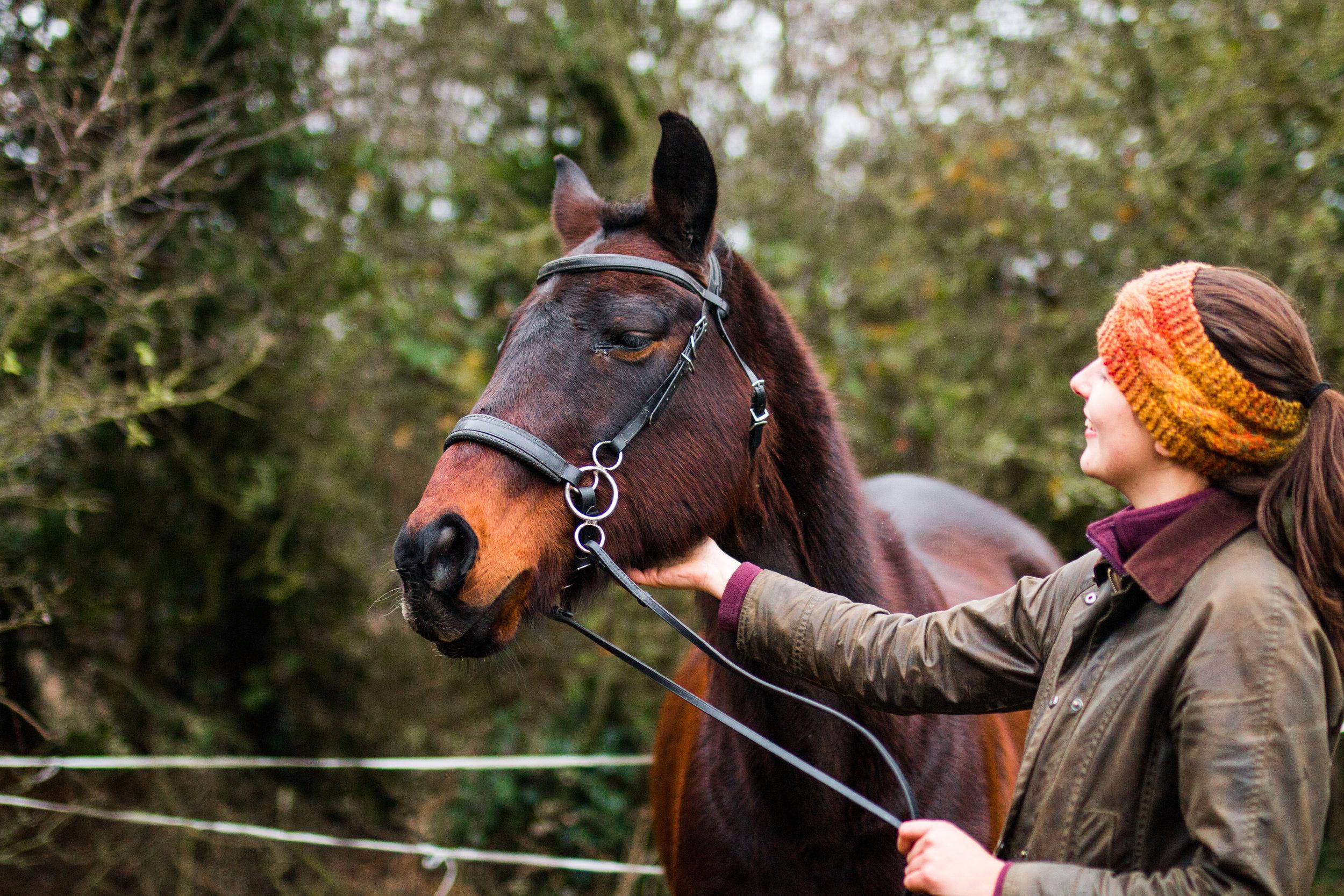 Horse photography kent