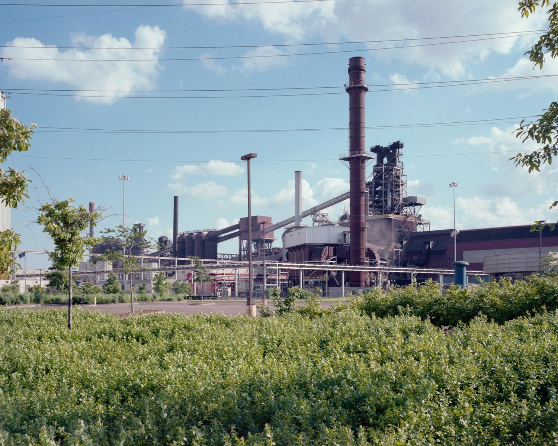 Landscape015 copy.jpg