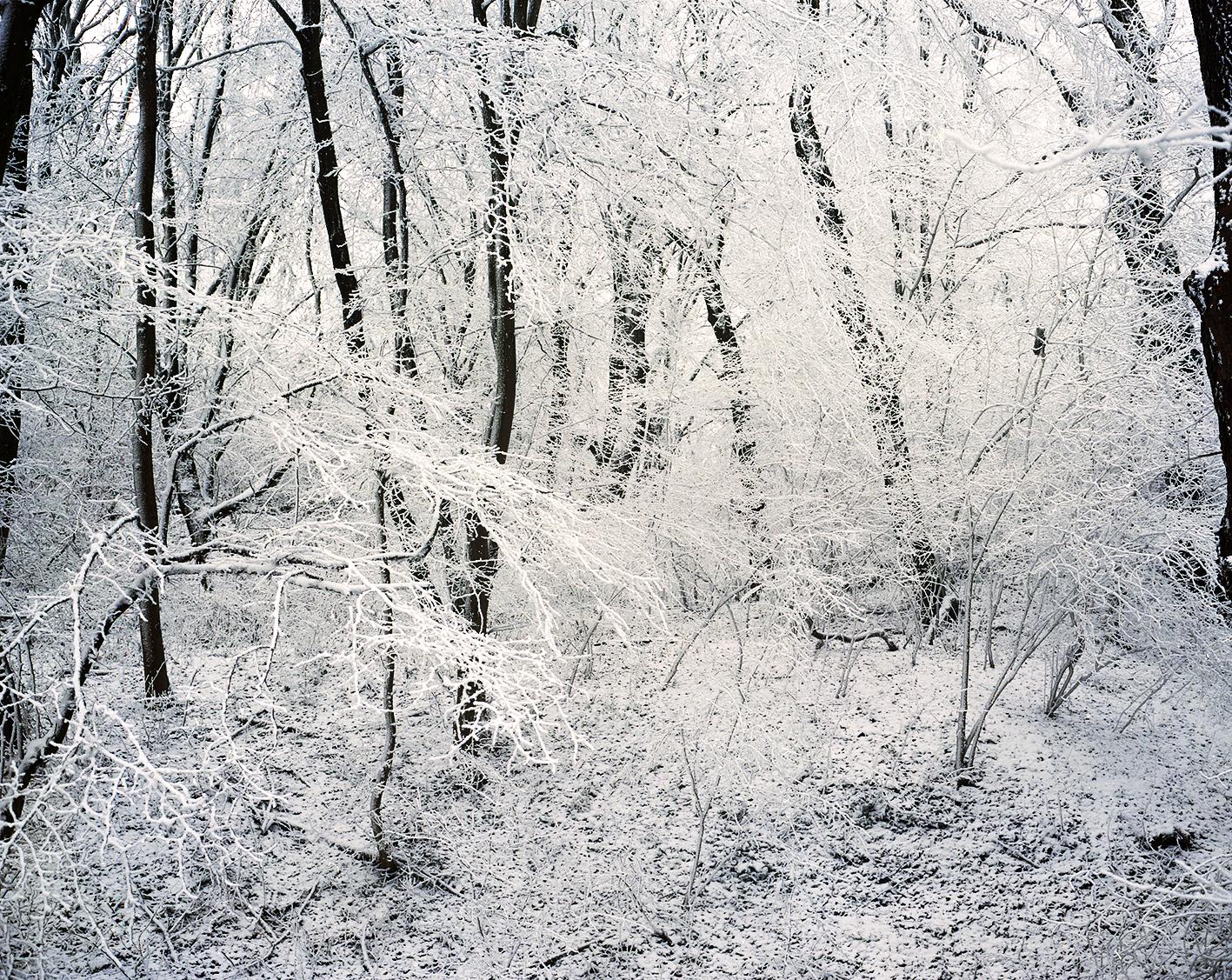 Vienna_Winter_JamieMSmioth- (2).jpg