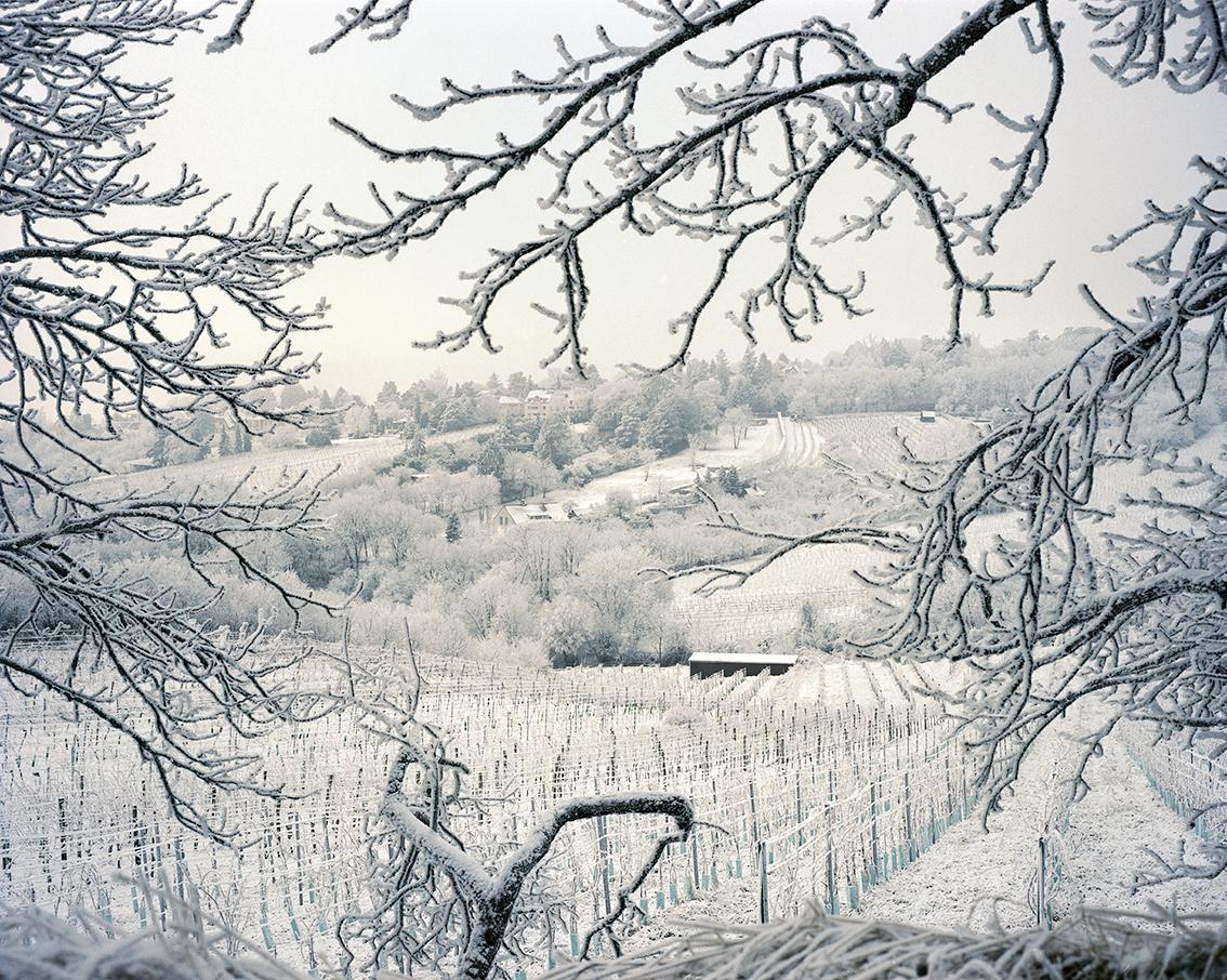 Vienna_Winter_JamieMSmioth- (7).jpg