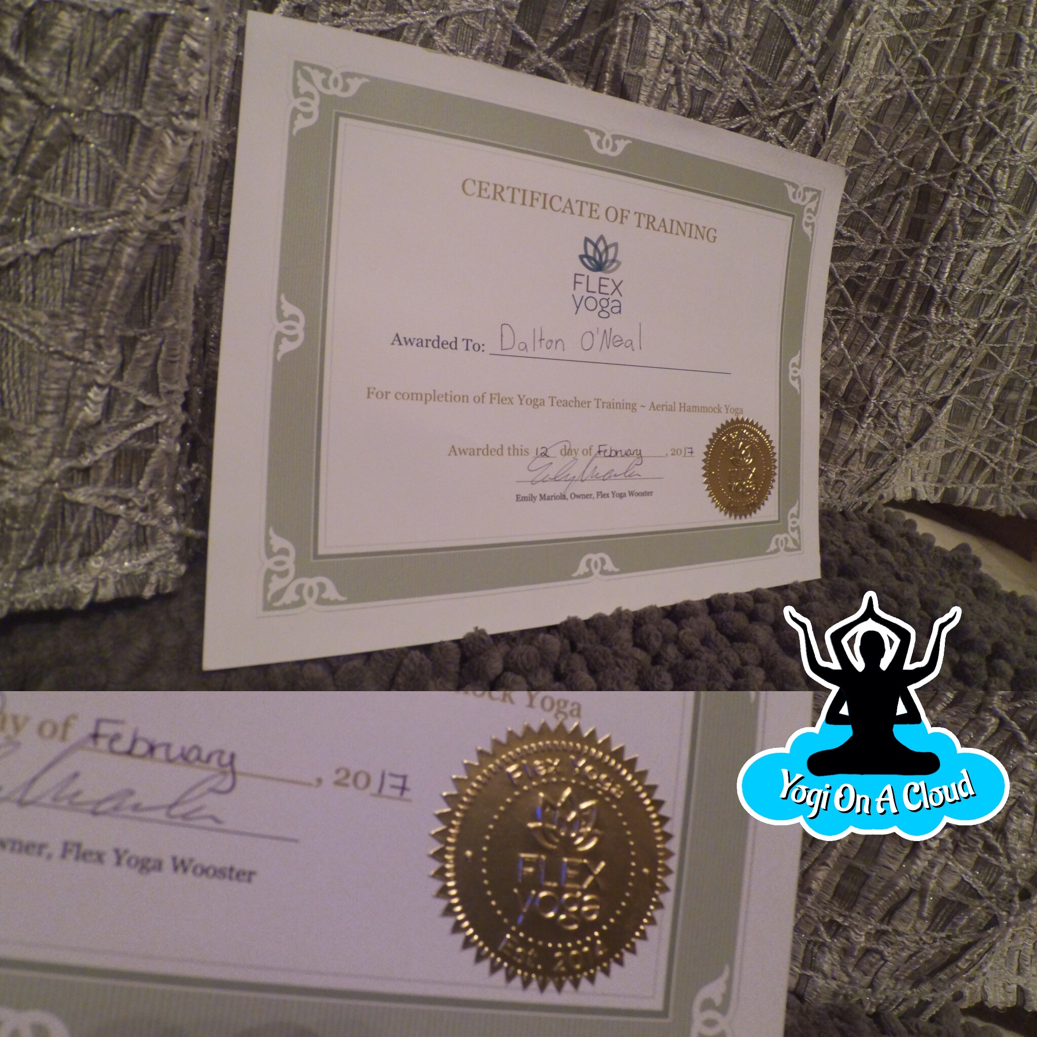 aerial-certificate-picture.JPG