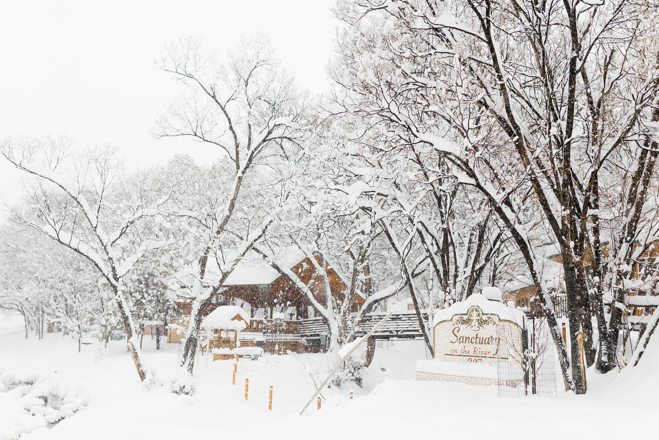 Sanctuary on the River winter scenic by  Chrisi K. Photography .
