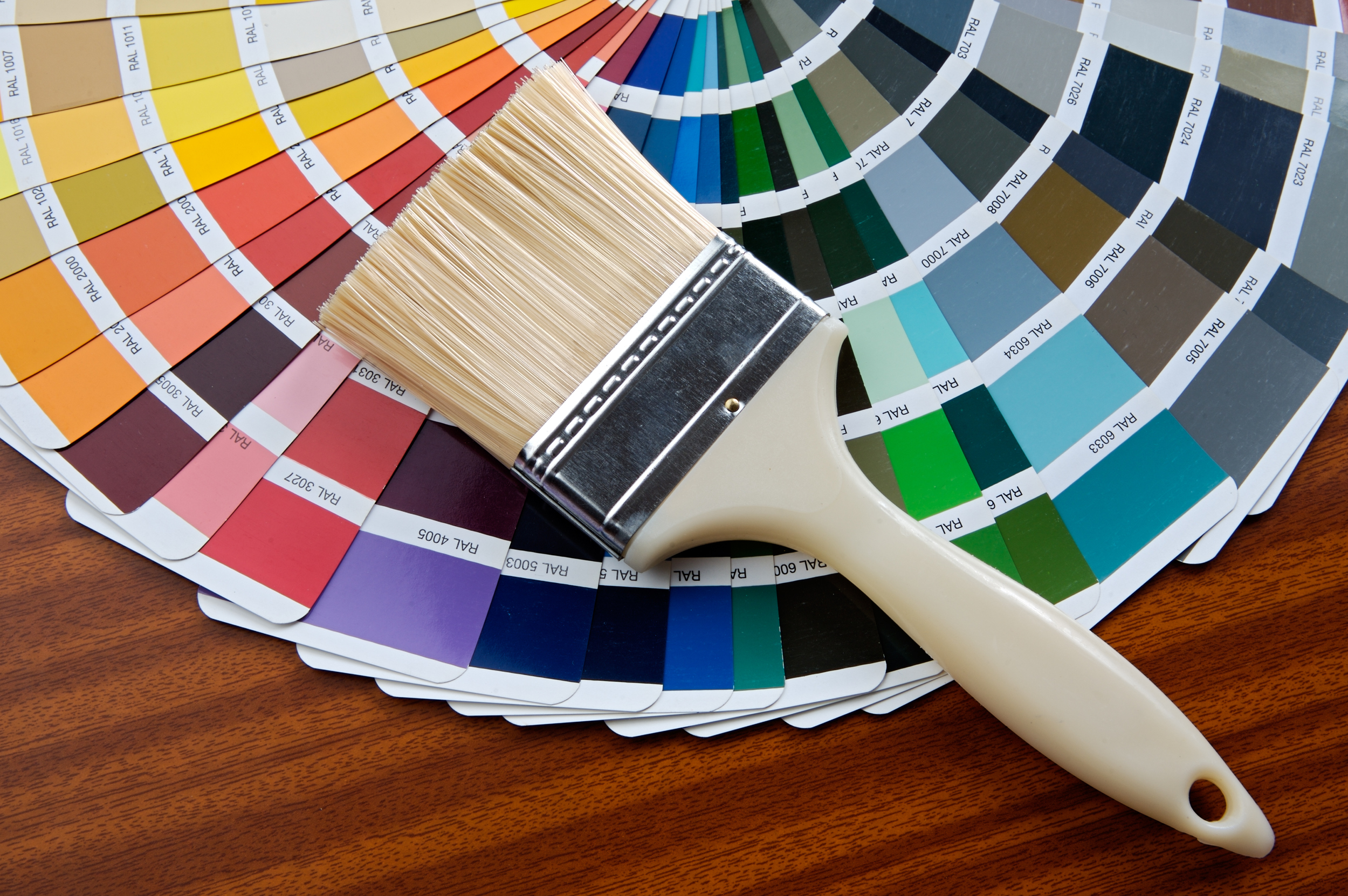 Paint & Coatings Resins