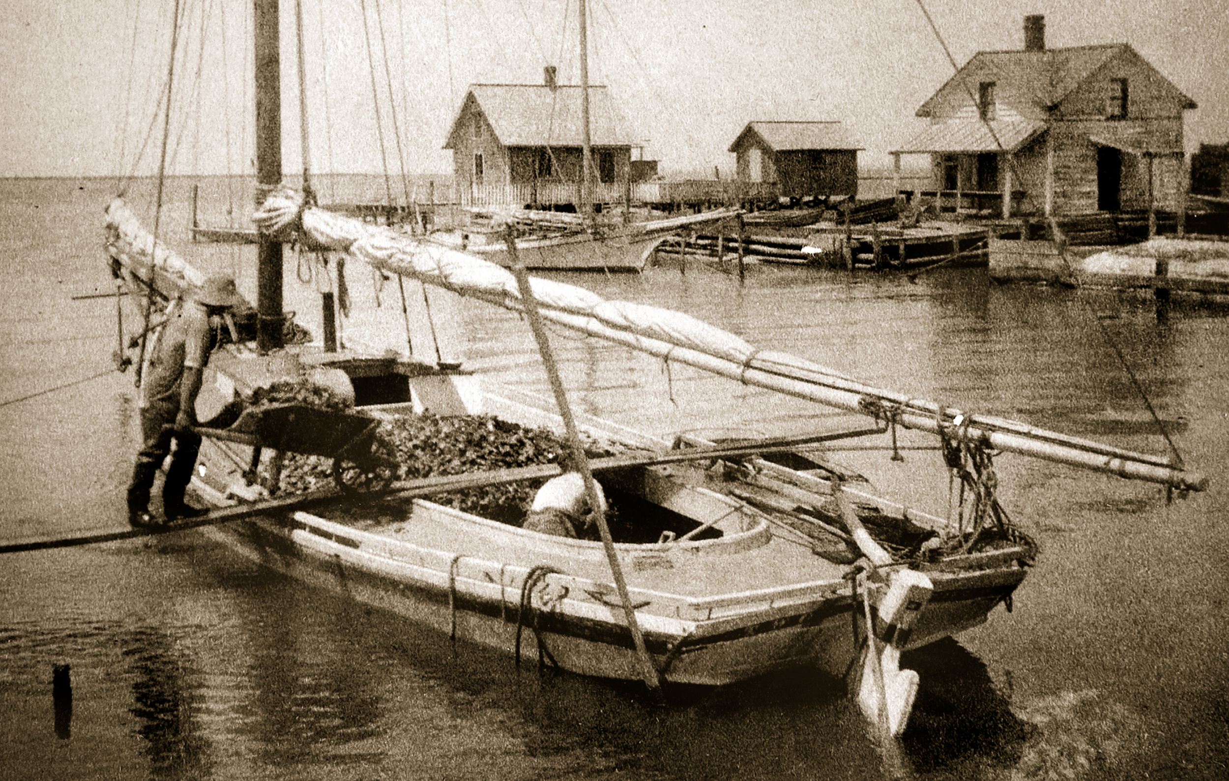 Loading oysters. Broadwater, Virginia approx. 1890