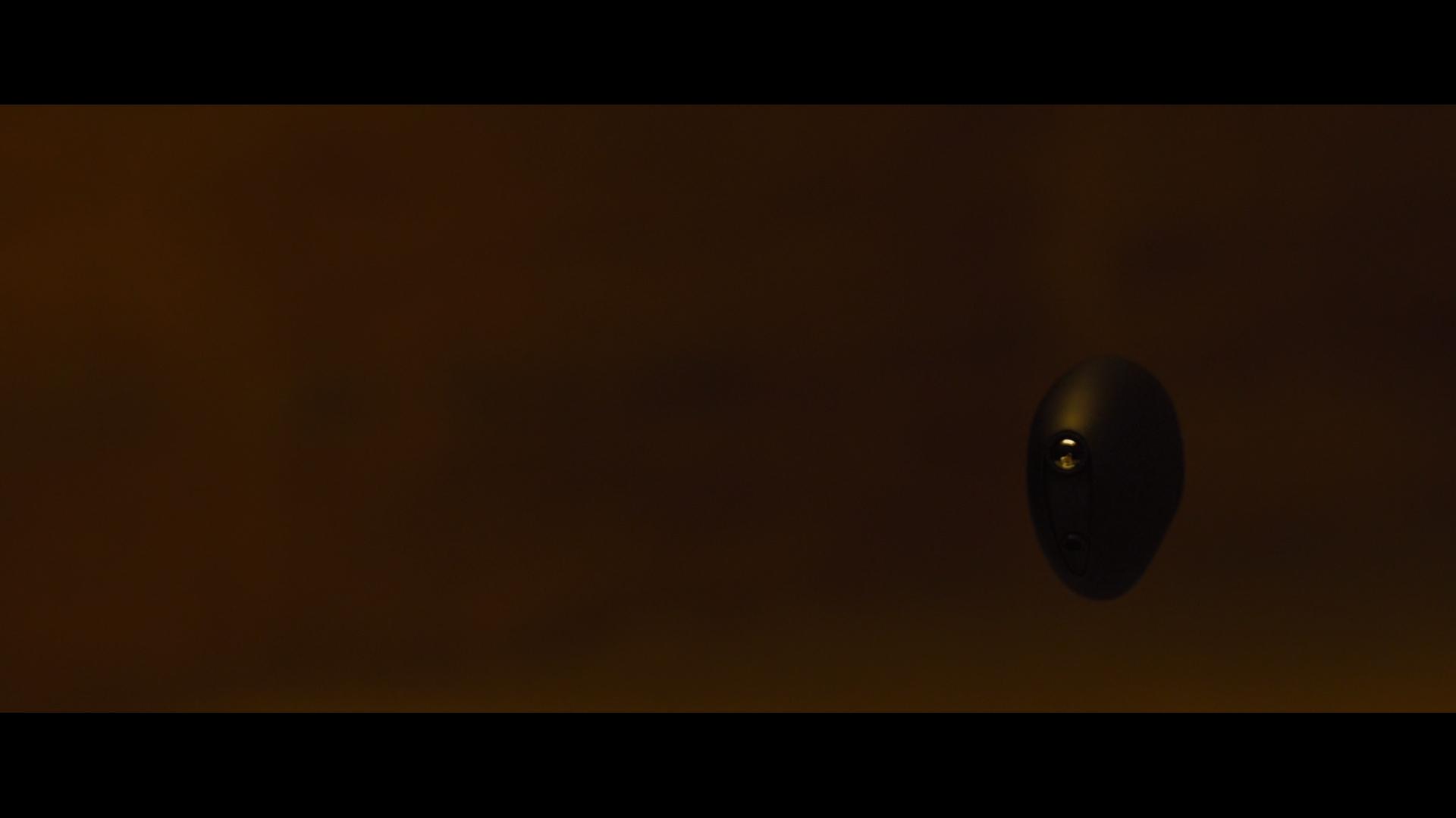 Wallace Barracuda Film.jpg