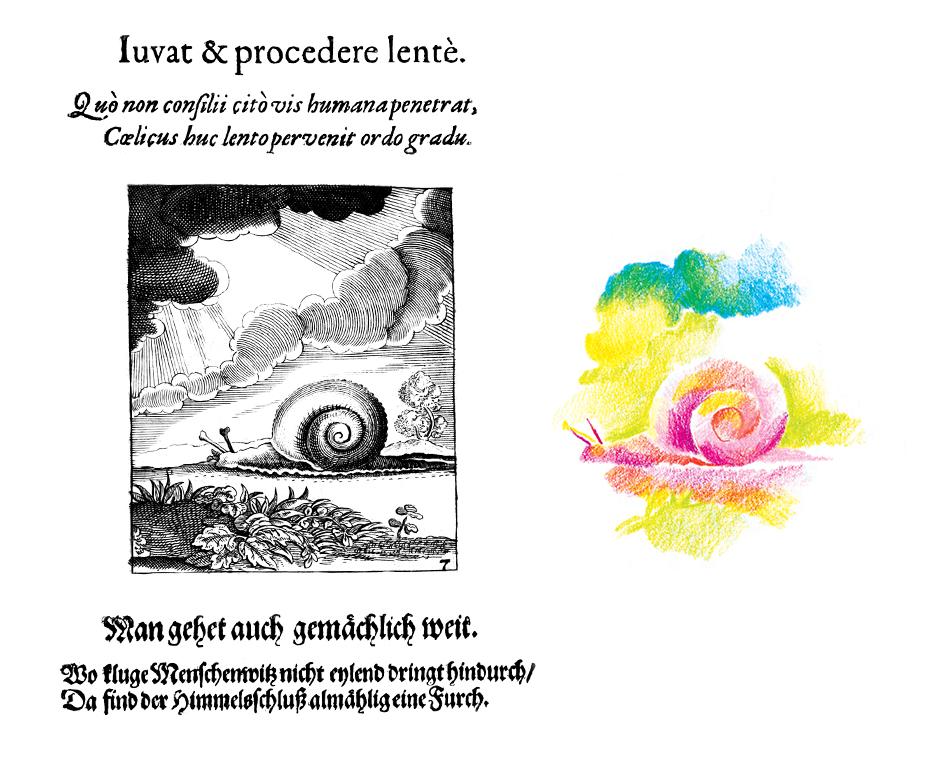 snail1.jpg