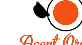 Agent Orange / Logo Reveal