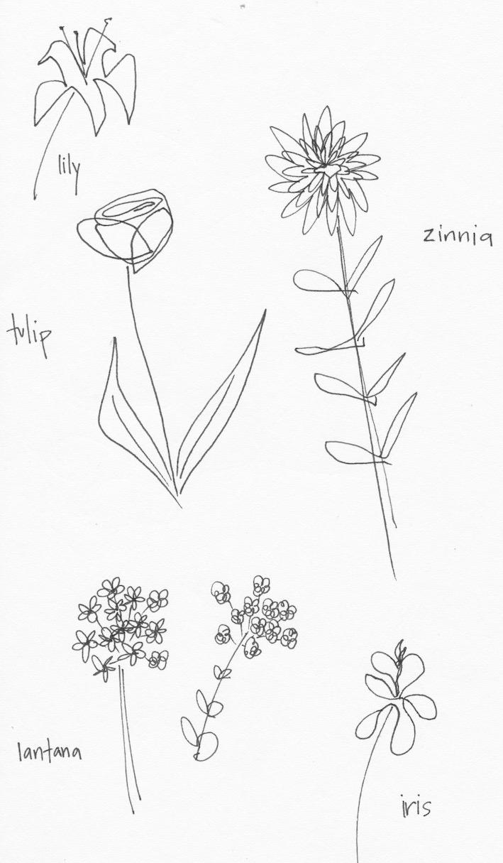 Flower sketches pen.jpg
