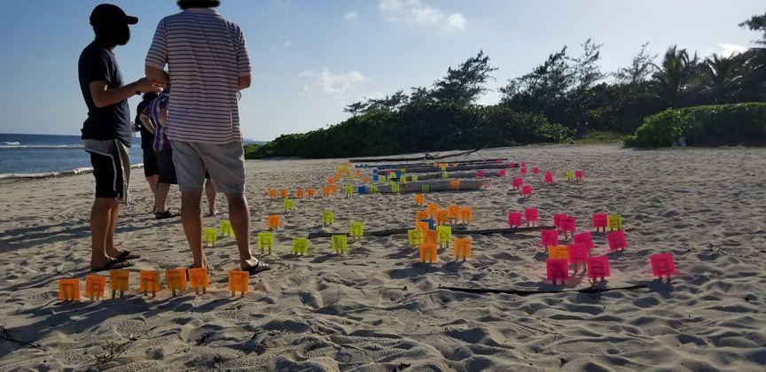 Photo 004 - Flags on beach.jpg