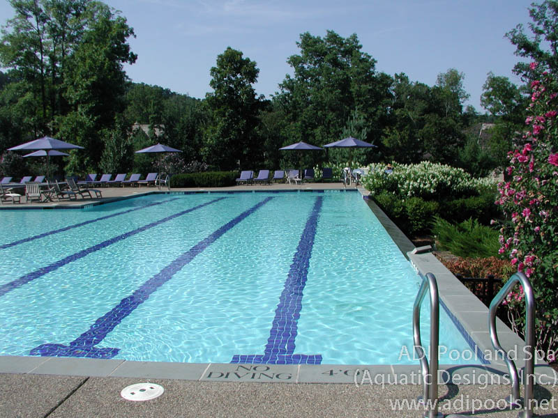 pool-with-bluestone-coping.jpg