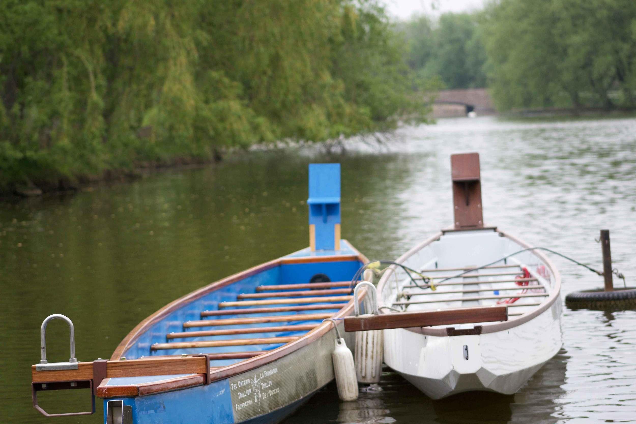 Avon River Dragon Boats.