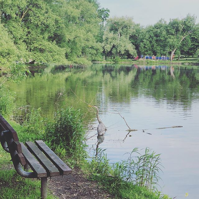 Mornings by the river. #stayatthewelly #stratfordon