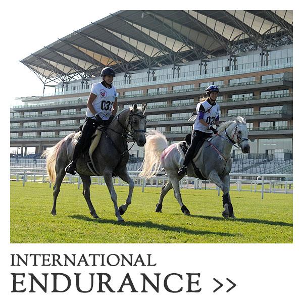 RWHS-international-endurance-categ.jpg