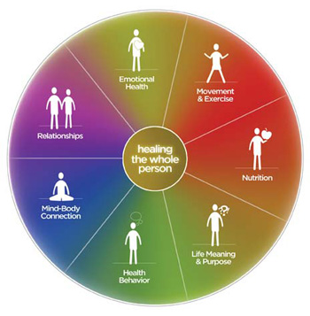 The Pillars of Health incorporate the understanding that to be effective in healing, all areas of a person's life must be addressed. At Dao Integrated Health, we start with Health Behavior and work with the beliefs a person holds about being and becoming healthy. We then move to eachpillarbased on the priority ofneeds the individual has for achieving their specific health goals.